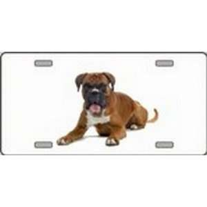 Boxer Dog Pet Novelty License Plates Full Color Photography License