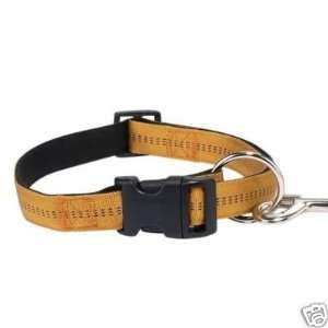 Zack & Zoey Padded Nylon Dog Collar GOLD 5/8 x 14 20