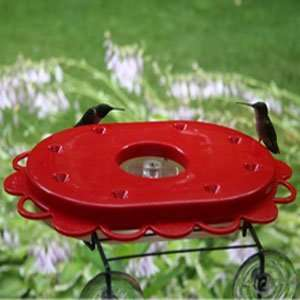 Birds Choice Hummingdome 16 Oz Hummingbird Feeder & Dome