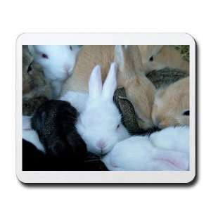 Sea of Bunnies Baby Bunny Rabbit purple Pets Mousepad by