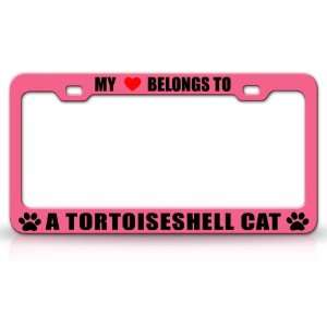 MY HEART BELONGS TO A TORTOISESHELL Cat Pet Auto License Plate Frame